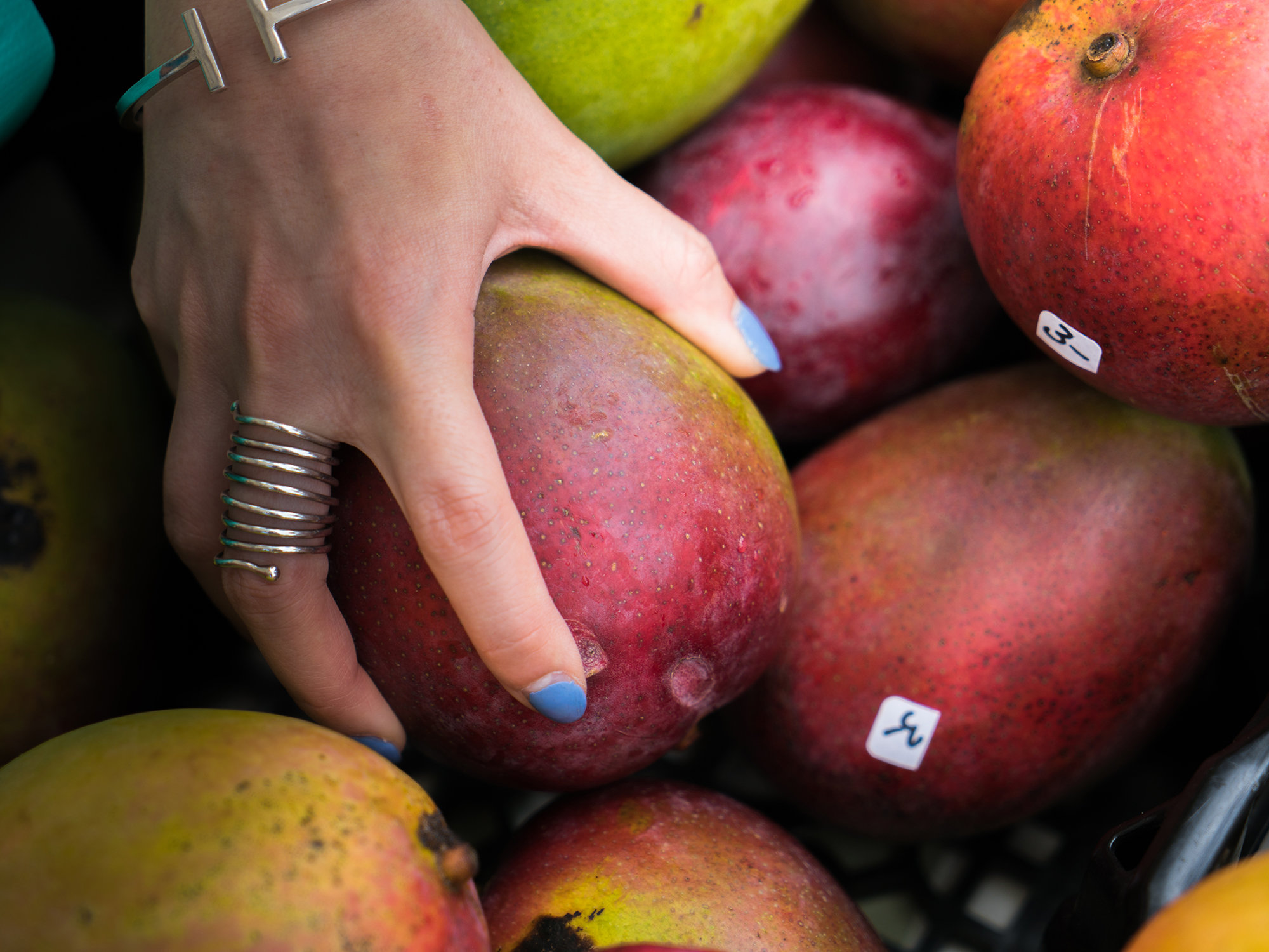 With Plenty Of Warm, Sunny And Relatively Dry Terrain, Especially On  South And Western Shores, Is Ideal For Many Species Of Mangoes